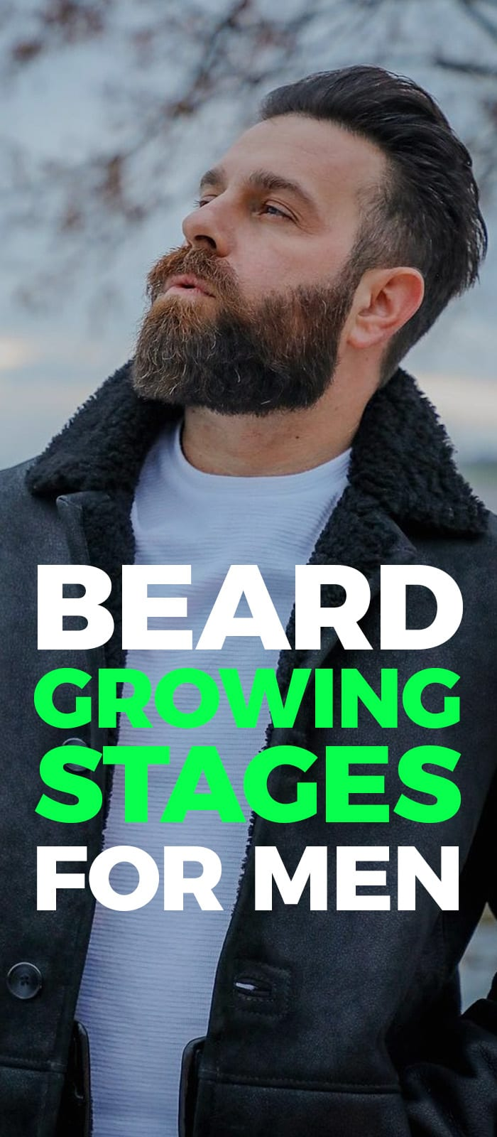 Beard Growing Stages.