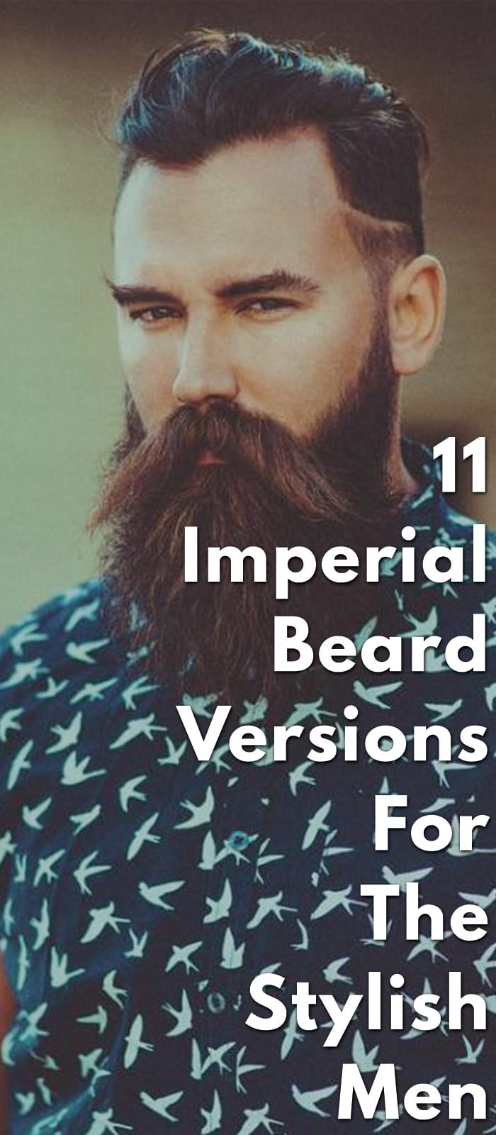 11-Imperial-Beard-Versions-For-The-Stylish-Men..
