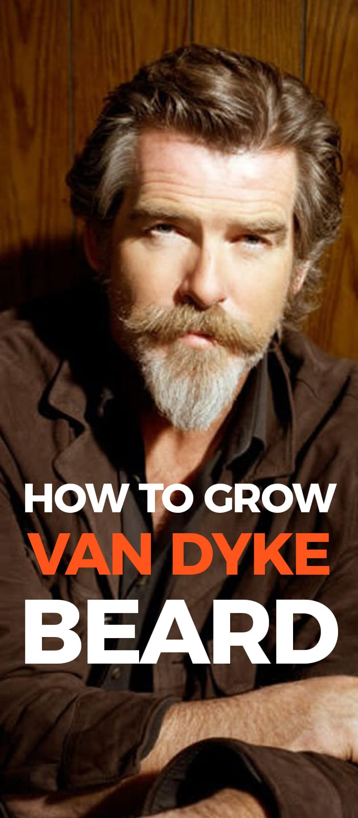 Perfect Van Dyke Beard.