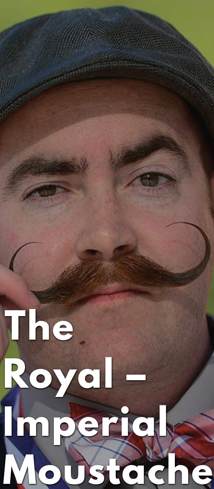 The-Royal-–-Imperial-Moustache.