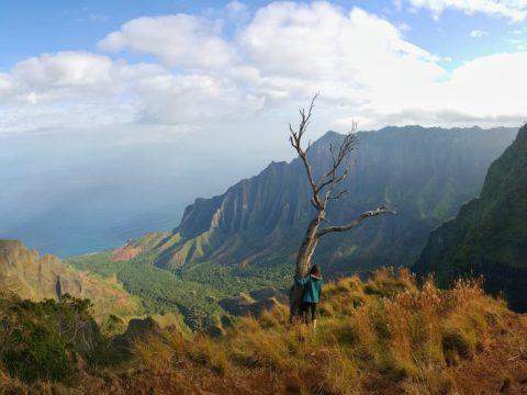 Kalalau Lookout Ridge Trail, Koke'e State Park, Kauai