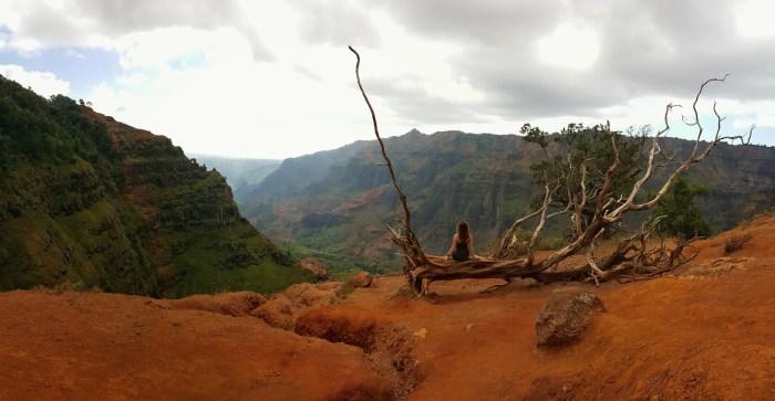 Cliff Trail, Canyon Trail, Waipo'o Falls Trail, Koke'e State Park, Kauai