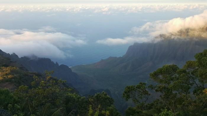 Awa'awapuhi Trail, Koke'e State Park, Kauai