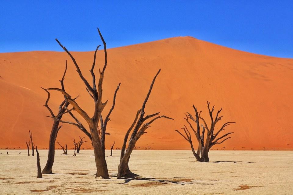 Namibia Ultimate Self Driving Guide, Deadvlei Sossusvlei Sesriem Naukluft National Park Namibia
