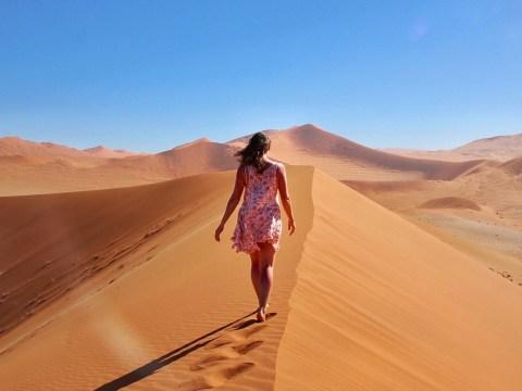 Namibia Ultimate Self Driving Guide, Namib-Naukluft National Park, Sossusvlei, Deadvlei, Dune 45, Namibia