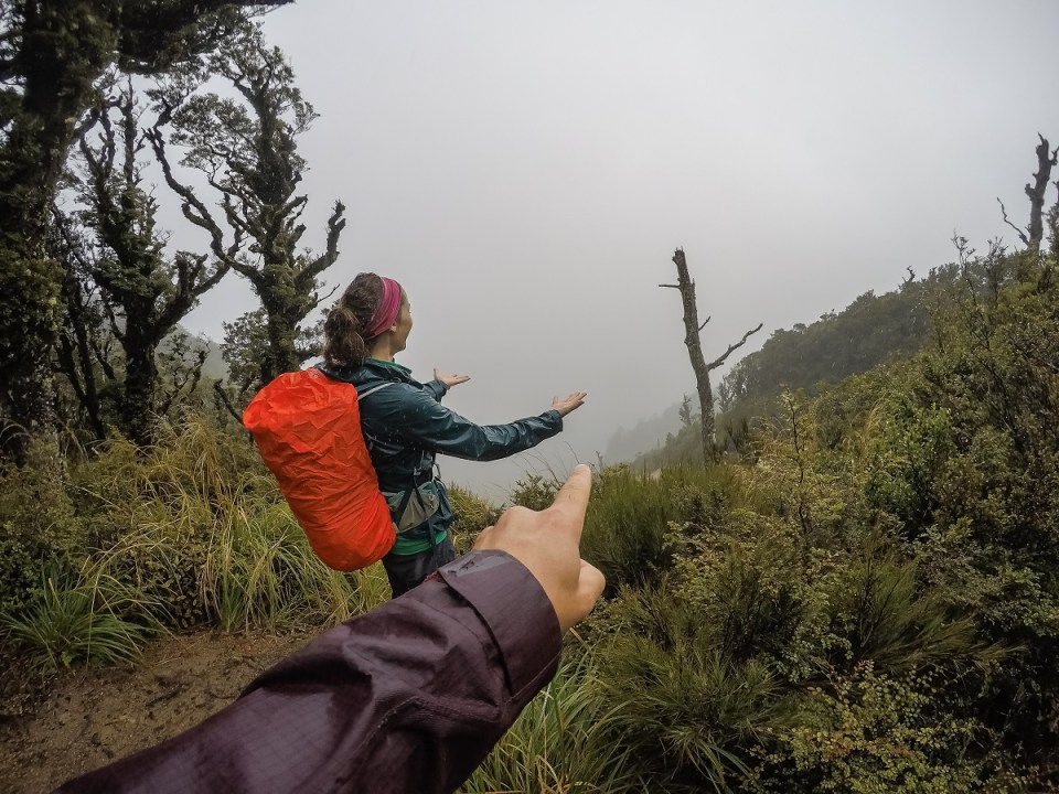 Lake Waikaremoana Track, The Nine Great Walks of New Zealand, Check out more at www.beardandcurly.com