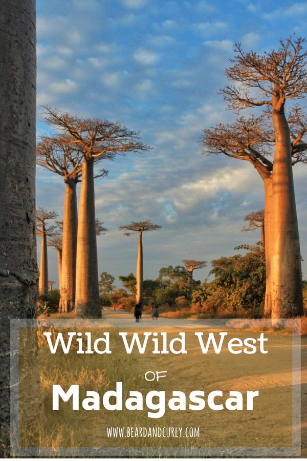 Wild Wild West tour in Madagascar, Pirogue Tour in Madagascar, Tsingy, Avenue of Baobabs, Madagascar #vacation #travel #madagascar www.beardandcurly.com