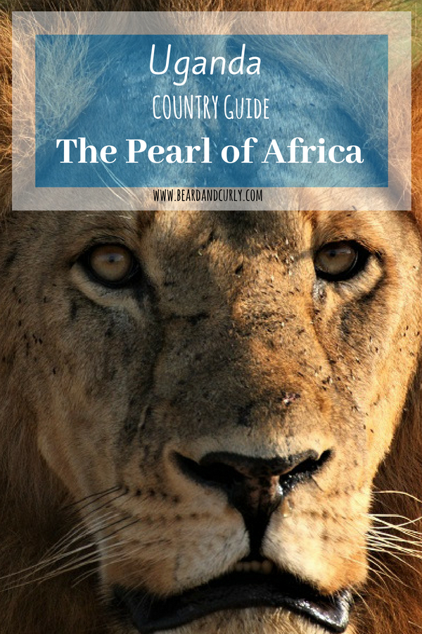 Uganda Country Guide: The Pearl of Africa, Safari, Murchison, Queen Elizabeth, Nile, Sipi Falls, Mount Elgon, Bunyoni #uganda #safari #africa www.beardandcurly.com