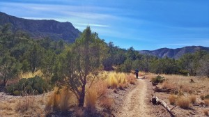 Emery Peak Trail