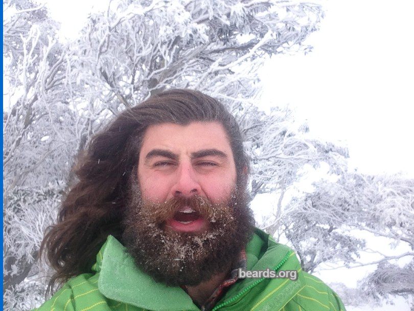 Kurtis, beard photo 6