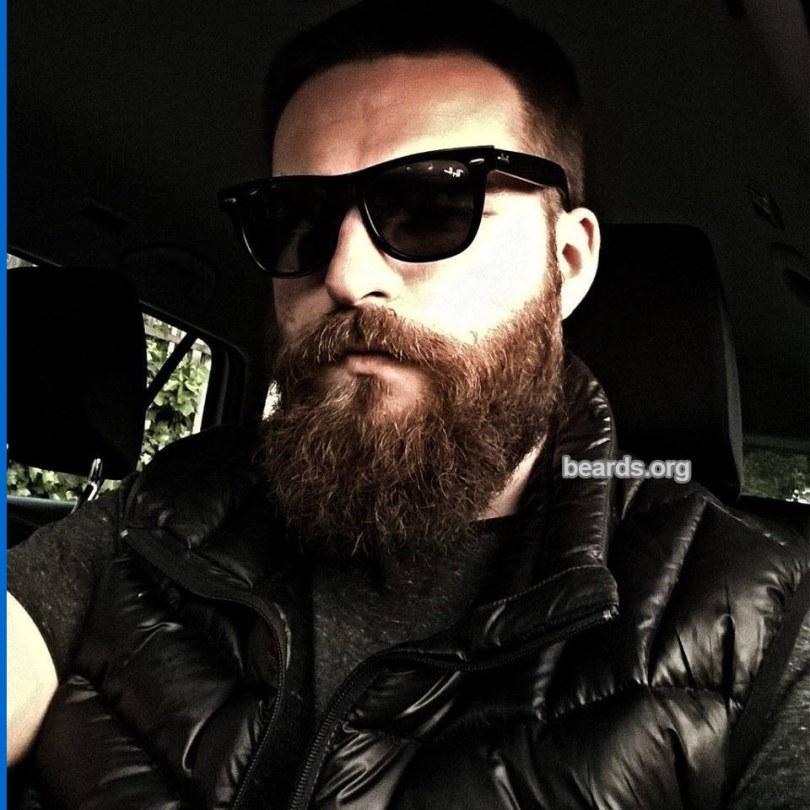 Marcin, beard photo 4