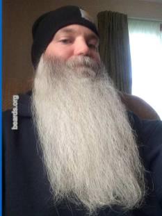 Steve, beard photo 4