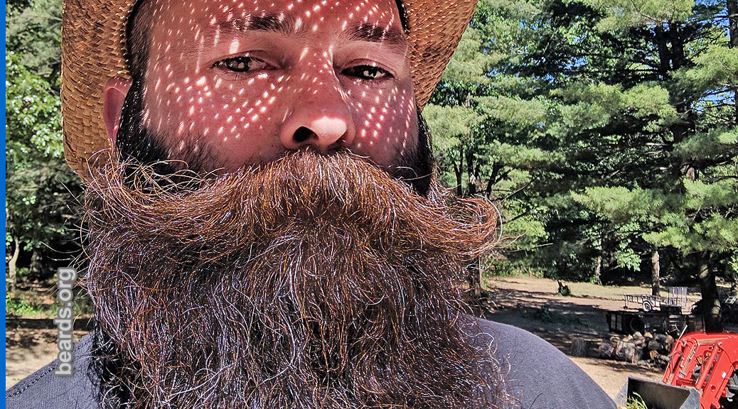 Joe, featured beard image