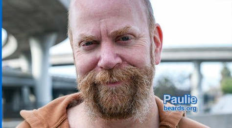 Paulie's superb beard feature image 1