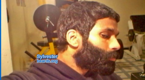 SuperBeard Sylvester beard feature image 1