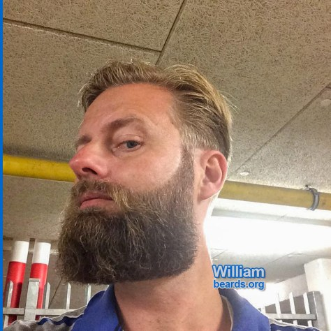 Looking sharp: William's beard right after a visit to the barber, feature photo 002