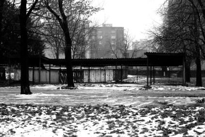 2012_111 - Grått i Bratislava