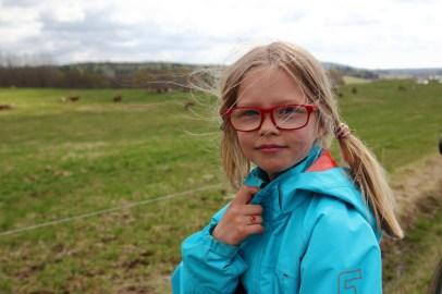 Kosläpp i Saxebyn - Molly på landet