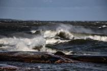 180810-171049-waves-1D8A6293