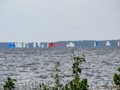 190818-114034-regatta-IMG_0437