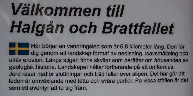 200419-134538-brattfallet-1D8A3837