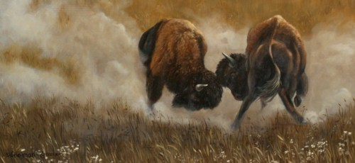 Clash Of The Bison by Carol Heiman-Green
