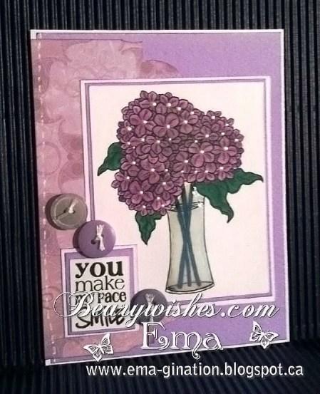 ema-hydrangea-blooms