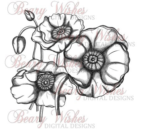 WM BW Poppies