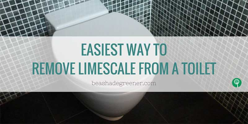 basg twitter toilet limescale ps be a shade greener. Black Bedroom Furniture Sets. Home Design Ideas
