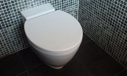 How to prevent and remove limescale in a toilet