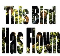 This-Bird-Has-Flown.jpg