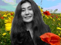 Sugarplum-Yoko.jpg