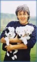PAUL-MCPUPPIES-The-Puppy-Master-Master-of-Puppies-JPM-Puppymaster-etc.-etc..jpg
