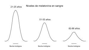 e60db-melatonin_simulacic3b3n_ages