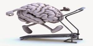 59b2b-brain-on-treadmill