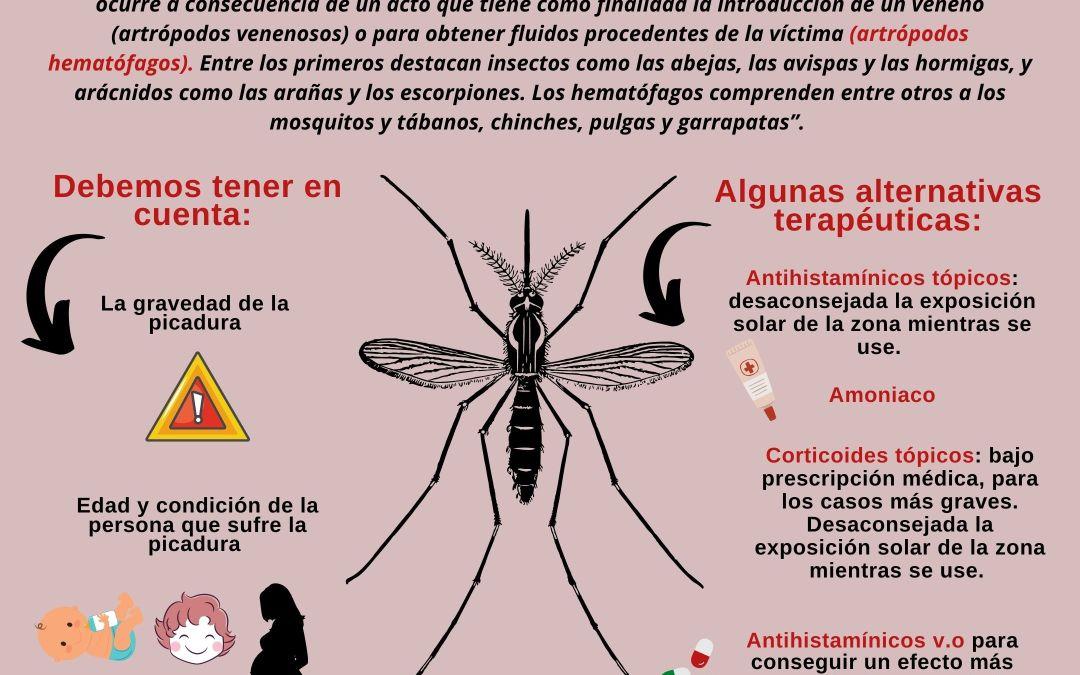 ¿Qué «ponerse» cuando nos pica un mosquito?