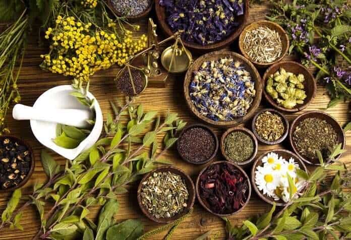Anti-aging Herbs for Radiant Skin