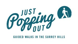 Just Popping Out logo