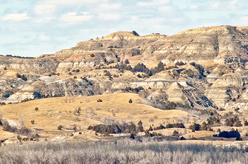 A shor thistory of the longhorns on the lonx x train in North Dakota ends at theNorth Unit of the Theodore Roosevelt National Park.
