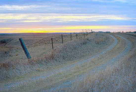 Fences in the sunset