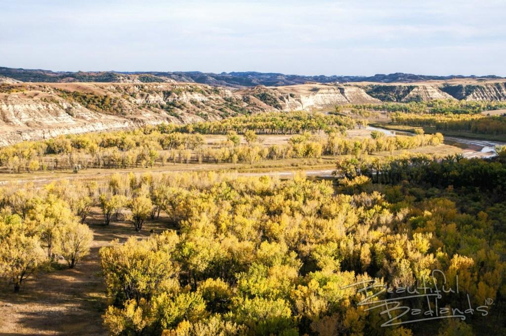 Little Missouri River, North Dakota Badlands, Badlands of North Dakota, yellow, fall colors