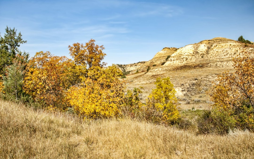 You can still enjoy Badlands camping. We proved it! Video and photos show it!
