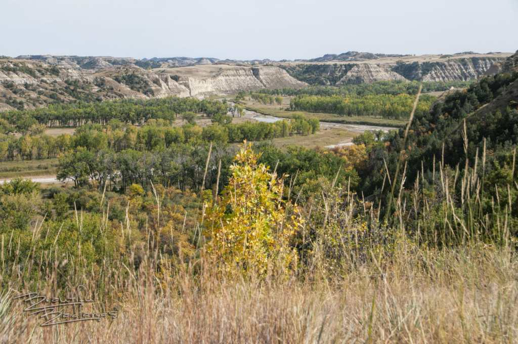 autumn fall in the North Dakota Badlands and the Little Missouri River