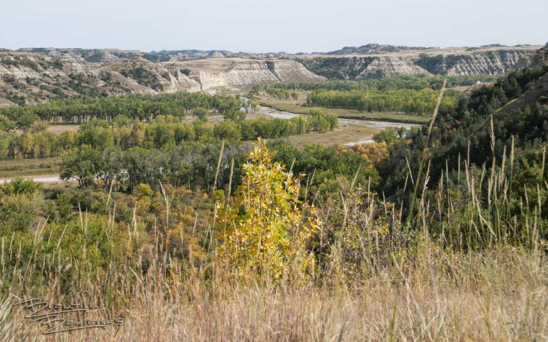 Don't stop!  Autumn in the Rugged Badlands is perfect exploring.