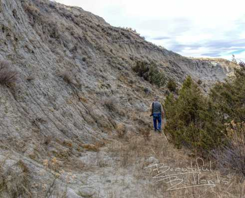 badlands path hill and trees