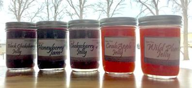 Chokecherry Among Assorted Berry Jellies from Mares Creations, Mott, North Dakota