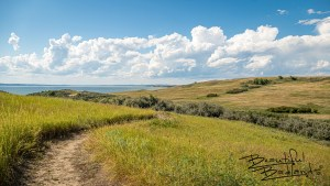 The Nux Baa Ga Trail at Indian Hills State Recreation provides sic + miles of hiking/biking/horse riding trails along the north shores of Lake Sakakawea.