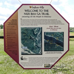 "Nux Baa Ga means ""All the People"" in Arikara. The trail is six miles long and accomodates hikers, horseback riders and bicyclists along the shores of Lake Sakakawea. The area is historically significant. Signage pays tribute to Elbowoods and surrounding communities that were lost to the lake."