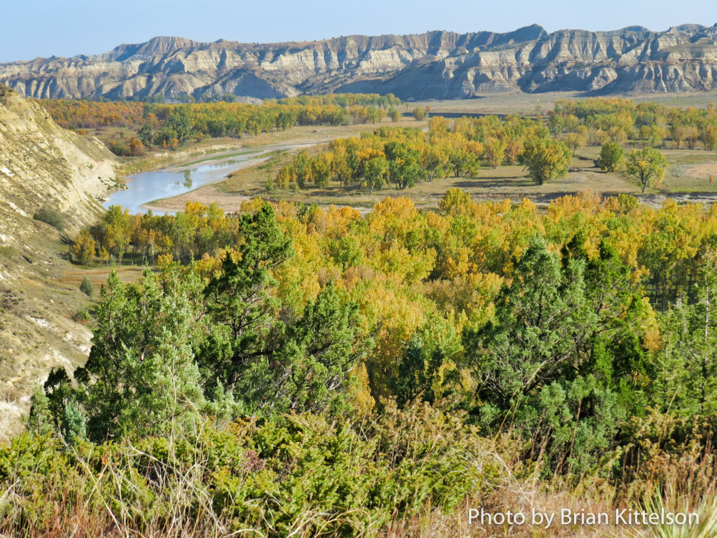 The slowly meandering Little Missouri River near Theodore Roosevelt's Elkhorn Ranch.