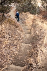One of Many Sets of Steep Steps on Upper Caprock Coulee in the North Unit of Theodore Roosevelt National Park, North Dakota